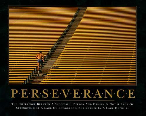 perseverance-leadership