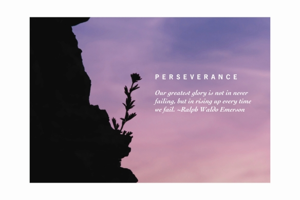 perseverance1