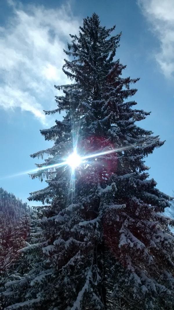 lumina frumoasa